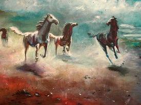 Paarden in het Park
