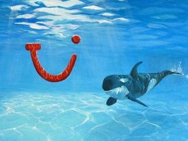 TUI Onder water