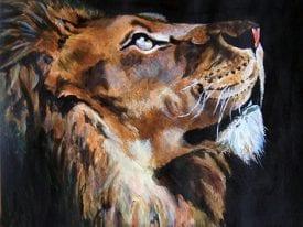 Schilderij Leeuw